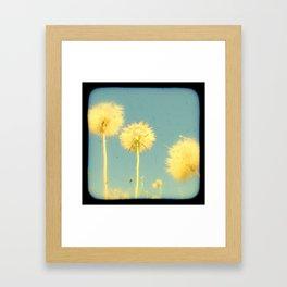 Summer Dandelions #2 Framed Art Print