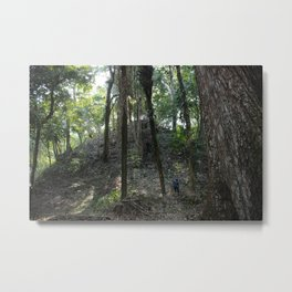 Mayan Mountain Metal Print