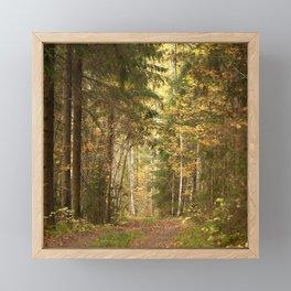 Wanderlust In The Forest #decor #society6 #buyart Framed Mini Art Print