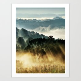 Morninglow Art Print