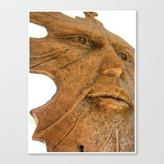 Face in the Wind  Canvas Print
