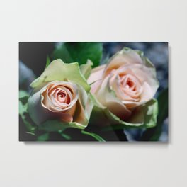 Whispering secrets Metal Print