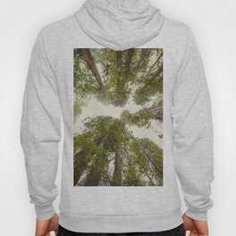 Into the Mist - Nature Photography Hoody