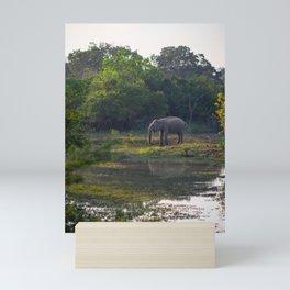 Elephant drinking on the green plains of Yala national park | Sri Lanka travel photography Mini Art Print