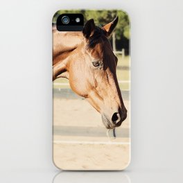Glorious Autumn 2 iPhone Case