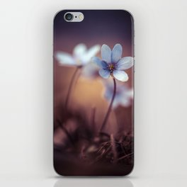 Liverworts iPhone Skin
