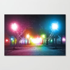 A Night in the Park Canvas Print