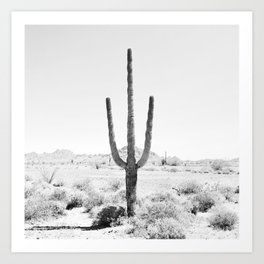 Cactus BW Art Print