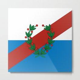 Flag of La rioja Metal Print