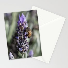 Lavender with Bee Stationery Cards