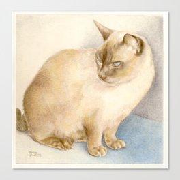 Cat, coloured pencil Canvas Print