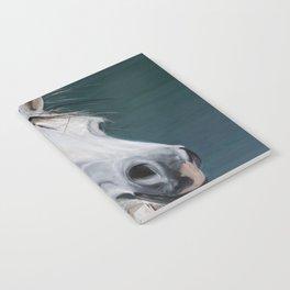 Nyte Dreamer Notebook