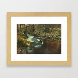 Getå Ravine Framed Art Print