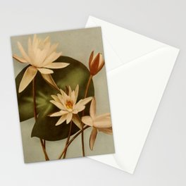 Vintage Water Lily Stationery Cards