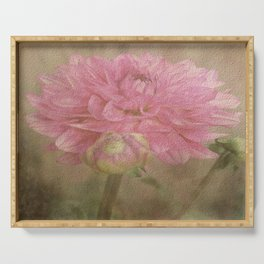 Soft Graceful Pink Painted Dahlia Serving Tray
