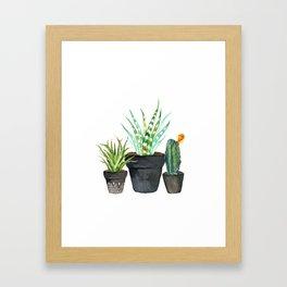 Watercolor cactus trio | hand painted cactus print Framed Art Print