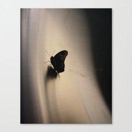 Chicago, 2010 Canvas Print