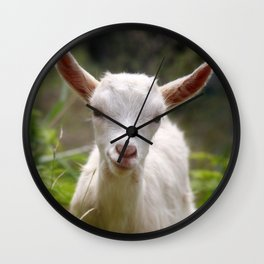 Baby goat Wall Clock
