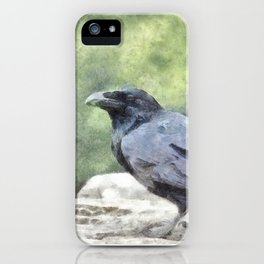 Crows Everywhere Are Equally Black iPhone Case