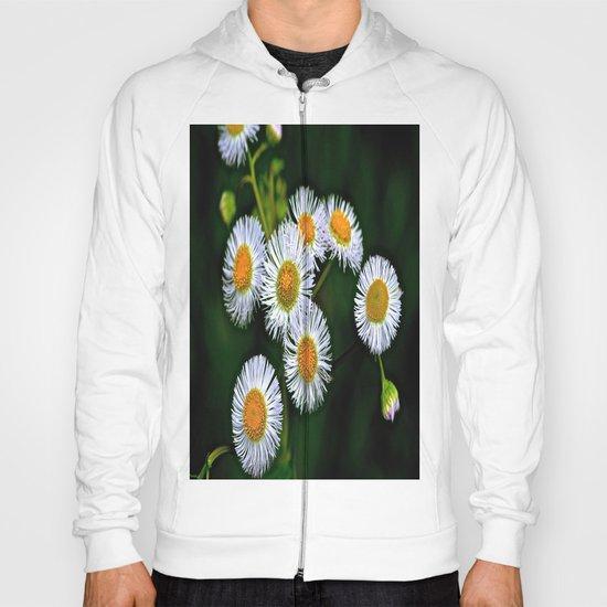Flowerworks Hoody