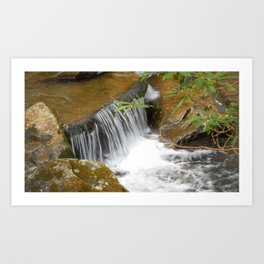 Smokey Mountain National Park Stream / Waterfall Art Print