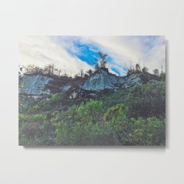 Mountains in the woods Metal Print