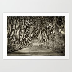 The Dark Hedges Art Print