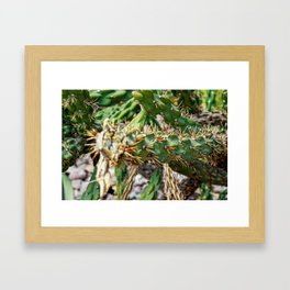 Take care Framed Art Print