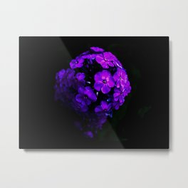 Planet of Flowers (Color) Metal Print