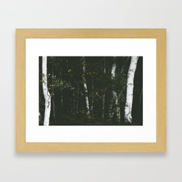 Holme Woods 8 Framed Art Print