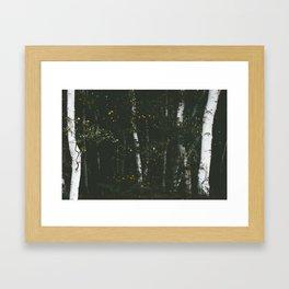 Holme Woods 8 Framed Art Print