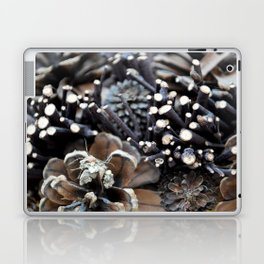 Pinecones Laptop & iPad Skin