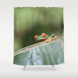 Red eye Frog on leaf Costa Rica Photography Shower Curtain