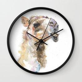 Moody Camel Wall Clock
