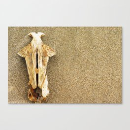 and another carcass Canvas Print
