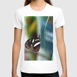 Doris Longwing Butterfly-2 T-shirt