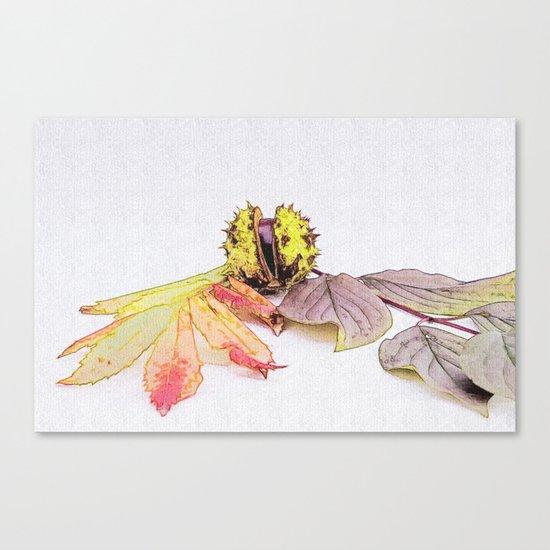 autumn feelings  Canvas Print