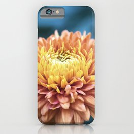 Longwood Gardens Autumn Series 217 iPhone Case
