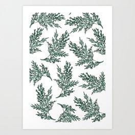 Watercolor Evergreen Pattern Art Print