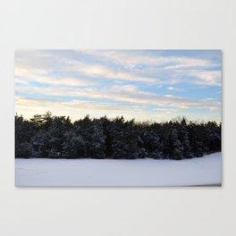 Snowy Sky 2 Canvas Print