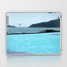 Swimming Pool Gull Laptop & iPad Skin