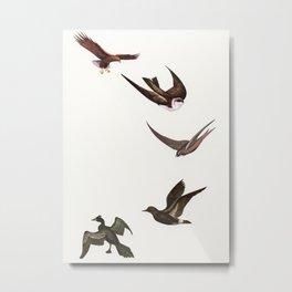 Holding Pattern Metal Print