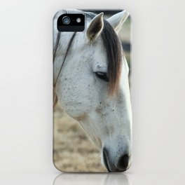 Lusitano Mare iPhone Case
