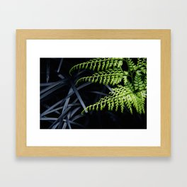 Fern Gully Framed Art Print