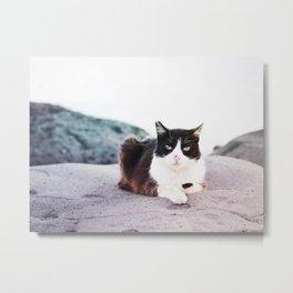 Seaside Kitty Metal Print