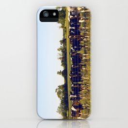 Cows In The Country II iPhone Case