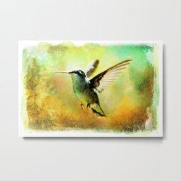 Hummingbird in Flight Watercolor Wash Metal Print