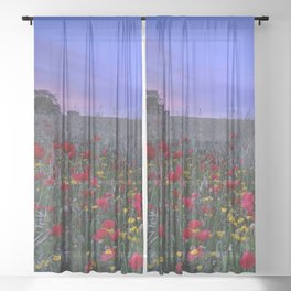Spring poppies fields. Purple sunset Sheer Curtain