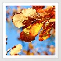 Autumn in Berrima Art Print