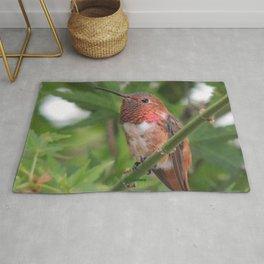 Hummingbird in the Japanese Maple Rug